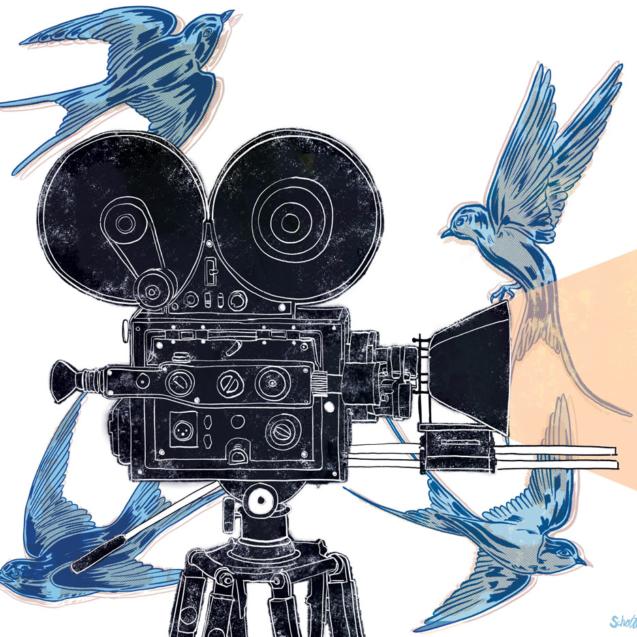 film_festival_cover-1000-w